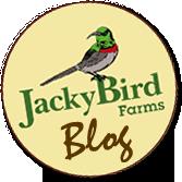 Jackybird BLOG